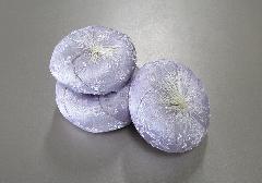 ●丸リン布団 2.0号 かのん パープル