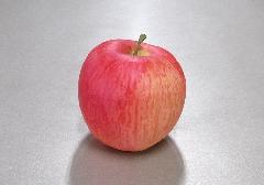 ■くだもの模型 リンゴ・りんご