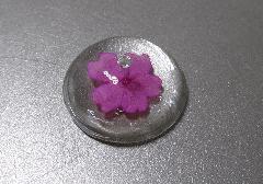 ☆お香立て 押し花シリーズ バーベナ