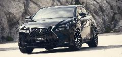 NX 新車コンプリートカー販売 WALD ブラックバイソン