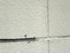 大阪市住吉区F様邸 外壁のひび割れ補修工事