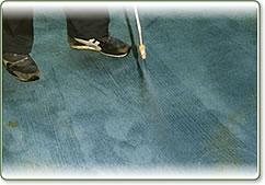 絨毯やカーペット