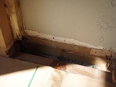 左調査箇所 解体後の映像 壁内に喰害が認められた