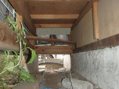 広縁増築部の床下木部に大きな侵入口が!