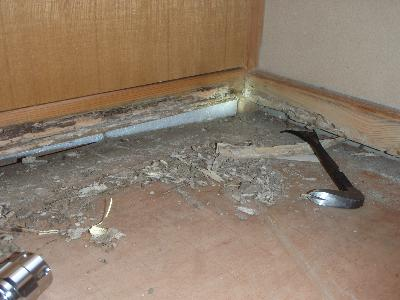 和室のタタミ寄せが喰害されていました。
