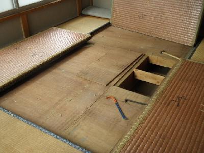 2階の和室床板を毒餌を設置する為開口