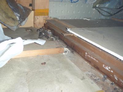 一階押入れ天袋から覗くと糞のかたまりがありました。