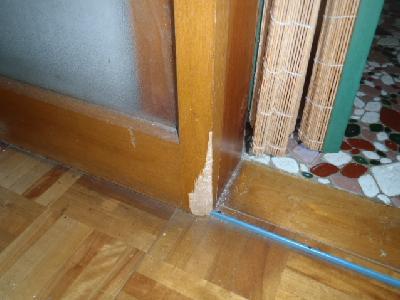 室内のドアや襖の角をカジられていました。