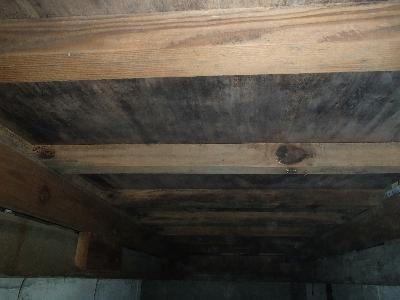 床下調査を実施したところ、多量のカビ発生が確認されました。埼玉県内の山間部にある1戸建住宅です。特に建物の西側にカビが集中しており、この付近では湿気がかなり溜まっている状態です。