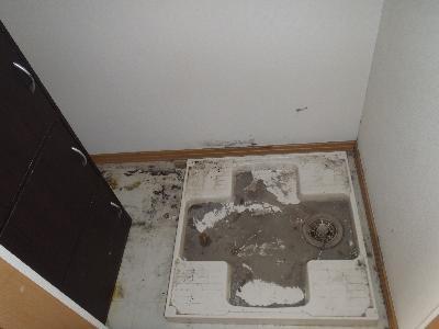 洗濯機の下