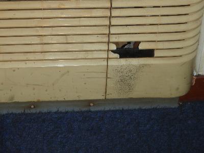 ルーバーの表面にはクマネズミの黒い足跡が