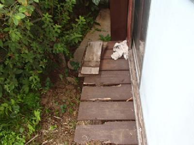 一階和室外部のぬれ縁に白蟻による喰害がありました