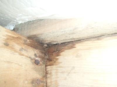 浴室土台木部 水漏れによる腐食部です