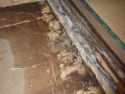 荒床板と敷居に白蟻による喰害