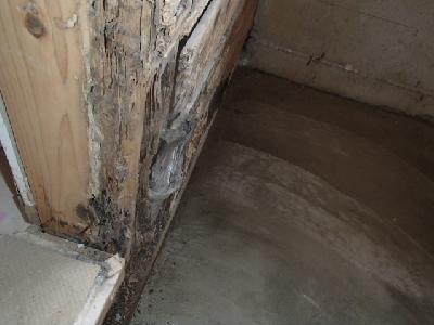 浴室入口ドアの枠材が白蟻被害