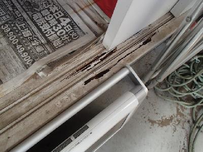 サッシ窓の敷居に白蟻喰害
