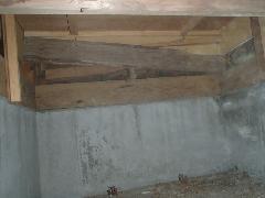 玄関上り框のシロアリ被害、その原因は?