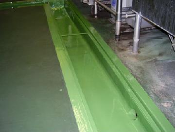 厨房防水修繕工事 東京都品川区