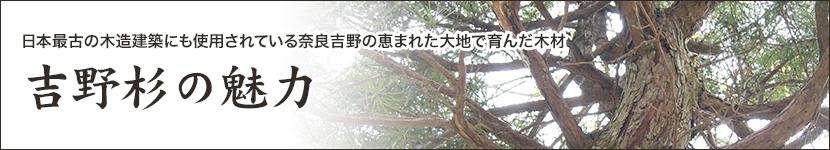 吉野杉の魅力