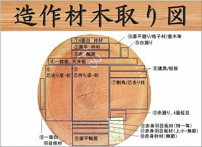 吉野杉 木取り図