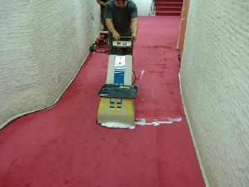廊下 カーペット清掃