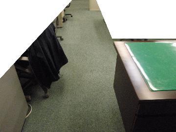 事務所 カーペット清掃