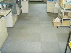 埼玉県 オフィス室 事務所 カーペット洗浄