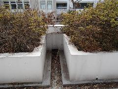 東京都八王子市 教育機関 排水溝洗浄作業