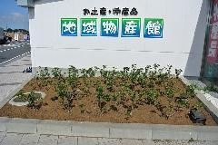 千葉県公共施設植栽 自動潅水ホース設置作業