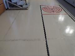 東京都日野市 体育館床面 シール糊 除去清掃