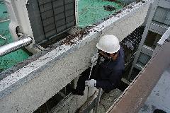 東京都世田谷区オフィスビル外壁のツタ取り作業 作業中