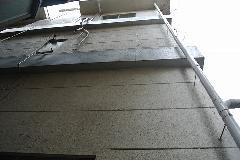 東京都世田谷区オフィスビル外壁のツタ取り作業 作業後