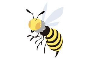 つたスズメバチ