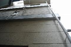 東京都世田谷区オフィスビル外壁のつた取り作業 作業後