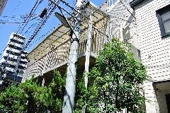 東京都中野区アパートツタ除去作業