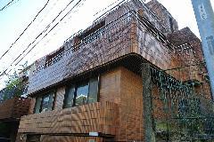 東京都港区三階建て住宅ツタ除去作業
