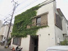 東京都小平市戸建て住宅つた除草作業