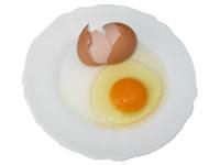 おいしい産みたて新鮮卵