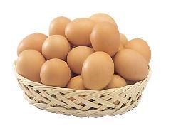 赤卵(鶏種-ボリスブラウン)