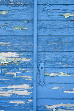 外壁の色選びはトレンドだけでは無く家に似合う色を考慮