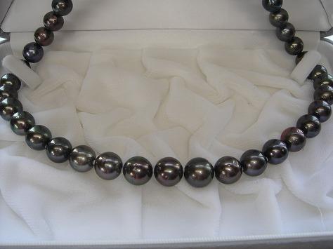 タヒチ産ネックレスB50562