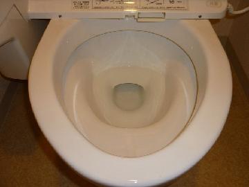 トイレ 清掃後