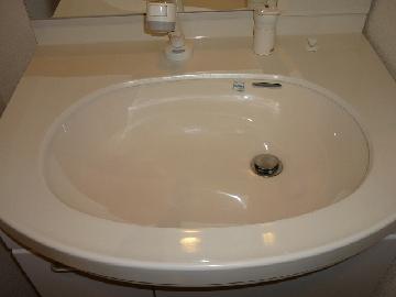 洗面所清掃