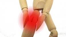 症状:有痛性分裂膝蓋骨症・2分骨膝蓋骨症