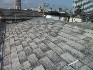 屋根材の色あせ
