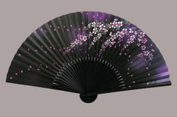 婦人用扇子 6.5寸 35間 黒染中彫 しだれ桜