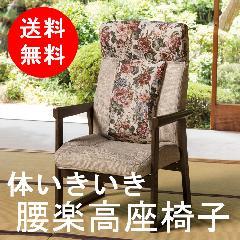 体いきいき 腰楽高座椅子