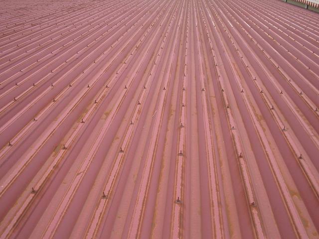 折板屋根の全面に錆がまわっていました。