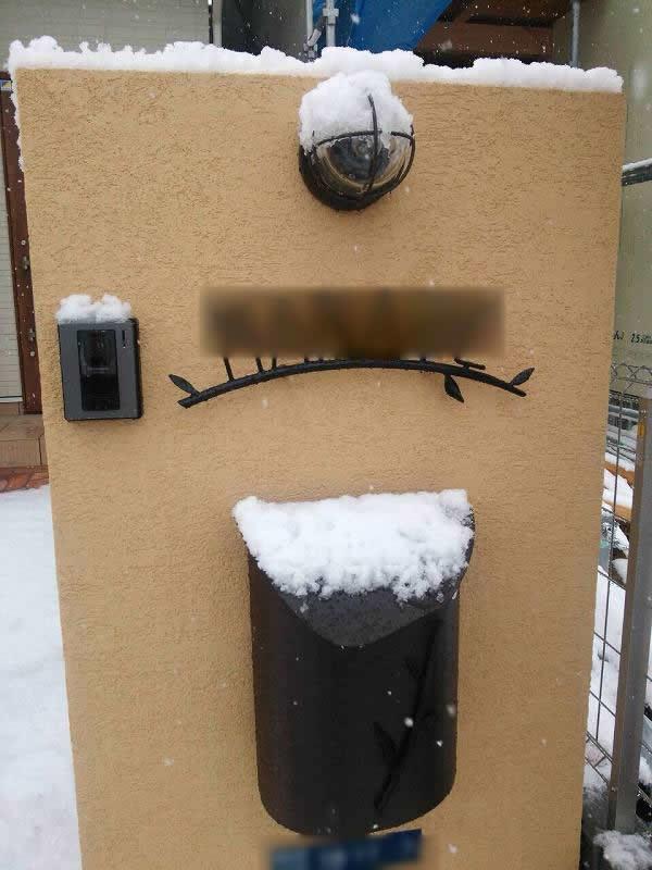 雪積もった門扉