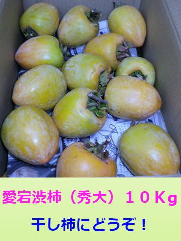 愛宕渋柿 (秀大) 10K